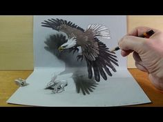 Art in 3D, Drawing a Hunting Eagle, Awesome Animals - YouTube