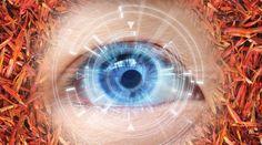 Saffron Improves Vision in Aging Humans - Life Extension