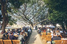 Relaxed South African Farm Wedding: The Cowshed Our Wedding Day, Farm Wedding, Wedding Things, Wedding Decor, Dream Wedding, Wedding Ideas, Outside Wedding Ceremonies, Wedding Ceremony, Farm Backdrop