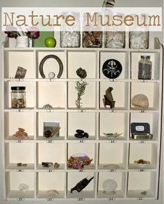 I love these ideas. I'm now on the lookout for a shelf like this for a kid-assembled museum