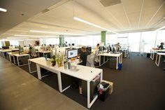 パーティションなどで区切られていないため、非常に開放感のあるオフィス