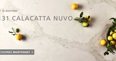 At Caesarstone, quartz countertops are our specialty and passion. Check out our endless possibilities of quartz surfaces that will light up your house. Ikea Quartz Countertop, Kitchen Countertops, Kim's Kitchen, Calacatta Quartz, Updated Kitchen, Bath Ideas, Kitchens, Dreams, Google Search