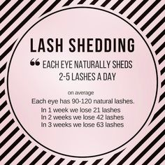 When done professionally eye lash extensions give you long lushes, beautiful lashes that look natural. Eyelashes Grow, Permanent Eyelashes, Ardell Eyelashes, Thick Eyelashes, Big Lashes, Lash Quotes, Eyelash Extensions Styles, Hair Extensions, Makeup Eyes