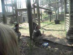 Charles and Sadiki demonstrating medical training at the Toronto Zoo