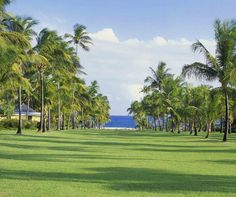 Nisbet Plantation included in 3 of the most historical Caribbean hotels.