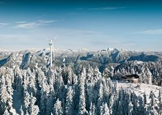 Grouse Mountain - The Peak of Vancouver, North Vancouver, BC