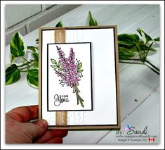 Stampin Up Lots of Lavender -