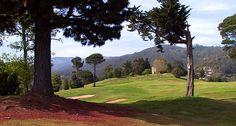 palheiro_golf_03.jpg