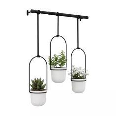 Triflora Hanging Planter White/Black - Umbra : Target