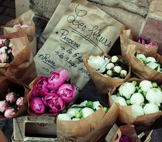 bags of peonies: Flowers simply are inspiring beauty at any season!!
