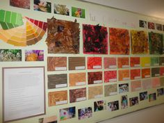 """The Colours of Autumn Display from The Curious Kindergarten ("""",)"""