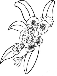 flower coloring page  Flower Coloring Pages  Pinterest  Frben