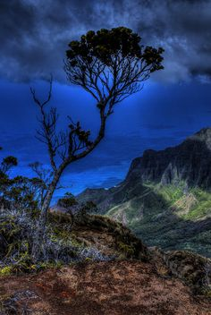 Blue Hawaii By FlyingColors Kalalau Valley and the Napali Coast of Kauai
