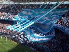 Estadio de Racing Club de Avellaneda, Buenos Aires.This is not my Soccer team, but, I must admit I do love the colors.