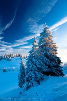 beautiful shot of winter trees in Switzerland Looks like my daughters house in colorado. Winter Photography, Landscape Photography, Nature Photography, Winter Pictures, Nature Pictures, Beautiful World, Beautiful Places, Beautiful Pictures, Winter Schnee