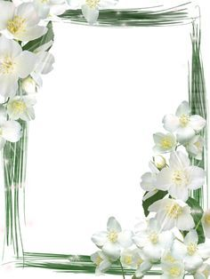 Transparent Green Frame with White Flowers