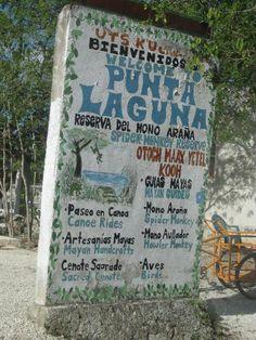 Top Places To Travel, Maya Civilization, Riviera Maya, Mexico, Culture, Best Places To Travel, Maya