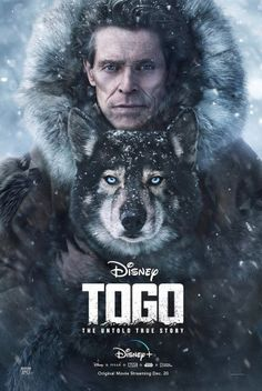 togo movie wallpapers - Google Search