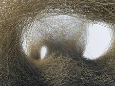 land art nest by Daniel Widrig CLLC Nest Images, Performance Artistique, Art Environnemental, Fabric Structure, Weaving Art, Bamboo Weaving, Nature Tree, Environmental Art, Work Inspiration