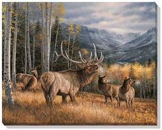 "rosemary millette paintings | Rosemary Millette Open Edition Wrapped Canvas: ""Meadow Music – Elk """