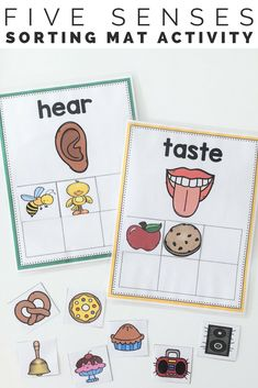 5 Senses Sorts These 5 senses sorting mats and cut and paste activities will be the perfect activity to engage your students in hands on meaningful learning during your 5 senses unit.