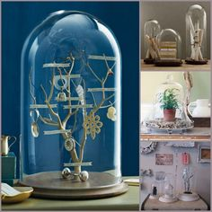 a must for me!  terrarium style display.