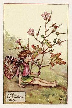 Herb Robert Flower Fairy, c.1927 by Cicely Mary Barker