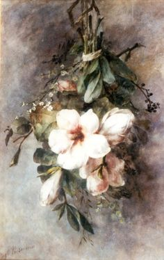 Roosenboom Margaretha. Magnolias