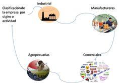 Las empresas se clasifican por su giro o actividad.