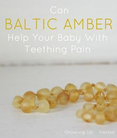 Can Baltic Amber Help Your Baby With Teething Pain? | GrowingUpHerbal.com | Baltic amber teething necklaces are hailed as a natural remedy for teething pain in children. Do they work? Here's what I found out.