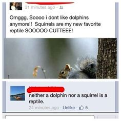 This person's take on the animal kingdom: | The 33 Dumbest Things That Happened In 2013