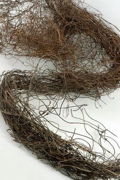 9   3 Inch Natural Twig Tiny Bird Nests, Bulk Buy | Nest, Bird And Spring