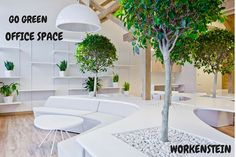 https://flic.kr/p/TrNWzq | GO GREEN | Go Green! Make your #Office #Space a peaceful and lively place #Best #Commercial #Office #Space for #Rent in #Chennai  #WORKENSTEIN #Property #OffShore  #Off #Shore #Development #Centre #Business #Center  #Fully #Furnished  www.workenstein.com/category/business-center-in-chennai/