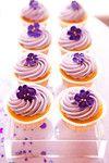 Purple cupcakes http://donnanewman.com