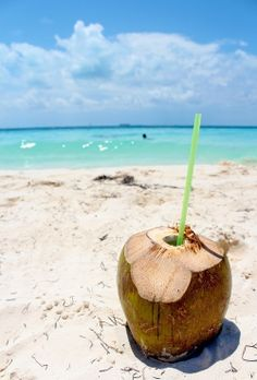 Coconut,sun and sand Summer Of Love, Summer Beach, Summer Vibes, Summer Fun, Summer Feeling, Summer Paradise, Tropical Paradise, Tropical Vibes, Coconut Drinks