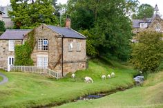 Hutton le Hole, North Yorkshire by griggsie on Flickr.