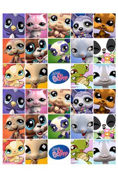 Littlest pet shop!!!!!!!!!!!!!!!!!