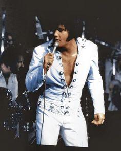 Elvis Presley Concerts, Elvis In Concert, Elvis Presley Photos, Elvis E Priscilla, Rock And Roll, Robert Sean Leonard, Thats The Way, Graceland, John Lennon