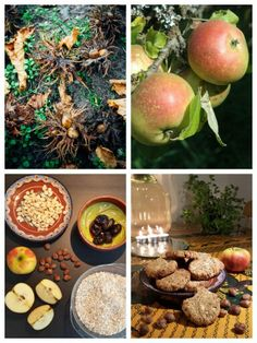 ☆ HAVERMOUT-NOTENKOEKJES Ingrediënten: - 200 g havermout - 2 friszoete appels - 50 g verse noten (bv. hazelnoten) - 60 g verse dadels - 50 g boter - 1/4 tl zout. Bereiding: Verwarm de oven voor op 170 °C. Rasp de appels en snijd de dadels klein. Pel de noten en hak ze fijn. Kneed alle ingrediënten tot een stevig geheel. Rol 12 balletjes en druk ze plat op een ingesmeerde bakplaat. Bak de koekjes in ca. 30 minuten bruin. Homemade, Cake, Home Made, Kuchen, Torte, Cookies, Cheeseburger Paradise Pie, Hand Made, Tart