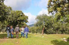 Y una vez desayuñados...emprendemos nuestra ruta senderista por esta bella #dehesaextremeña #NaturalezayVino #IVprimaveraenogastronomica