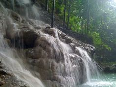 Sommerset Falls, Jamaica - No, its not just Dunn's River. We have many others including the gushing Mayfield falls, the rustic Secrets falls, the romantic Reach falls and many other hidden gems!