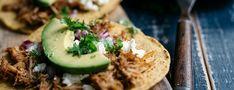 Free Download Fun: Eat Your Way Through the Riviera Maya
