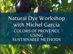 Natural Dye Workshop with Michel Garcia • Colors of Provence Using Sustainable Methods