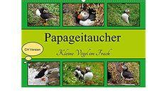 Papageitaucher Kleine Vögel im Frack CH Version (Wandkalender 2021 DIN A2 quer) Frack, Baseball Cards, Little Birds, Wall Calendars, Diving, Island, Deutsch, Animales