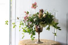 Great use of hellebore's by Tenth Meadow August6