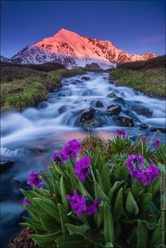 - world photography Beautiful Nature Pictures, Beautiful Nature Wallpaper, Nature Photos, Beautiful World, Beautiful Landscapes, Beautiful Places, Landscape Wallpaper, Scenery Wallpaper, World Photography