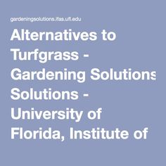 Alternatives to Turfgrass - Gardening Solutions - University of Florida, Institute of Food and Agricultural Sciences Agricultural Science, University Of Florida, Lawn, Alternative, Gardening, Food, Lawn And Garden, Essen, Meals
