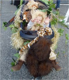 This lion-in-the-jungle costume is easy to re-create: just outfit the stroller in vines and branches, and dress your lil one up as a lion! Source: PhinneyWood.com