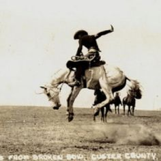 breaking horses....wow.....this is what my grandfather did as a young man...was told he was an Indian from Texas