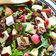 Apple Brie Salad #Recipe... #Salads with mixed greens, brie cheese, apples, pecans, dried cranberries, green onions, dressing, olive oil, apple cider vinegar, apple cider, honey, pepper and ginger.